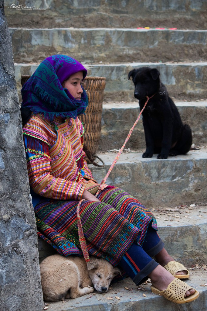 lady and the pups vietnam sapa