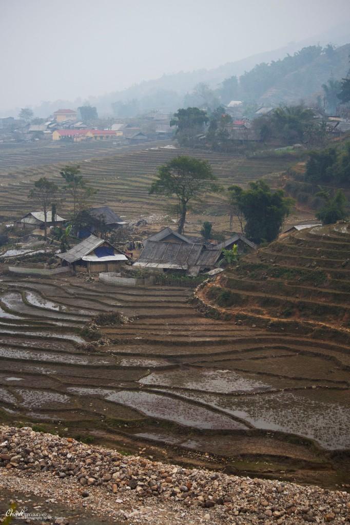 sapa rice terraces vietnam