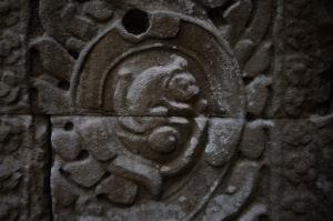 squirrel angkor